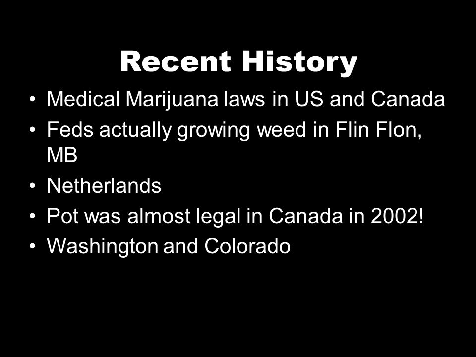 Recent History Medical Marijuana laws in US and Canada Feds actually growing weed in Flin Flon, MB Netherlands Pot was almost legal in Canada in 2002!