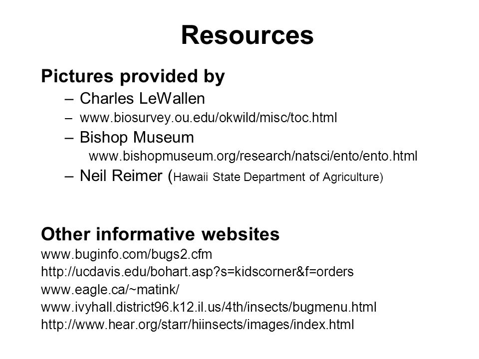 Resources Pictures provided by –Charles LeWallen –www.biosurvey.ou.edu/okwild/misc/toc.html –Bishop Museum www.bishopmuseum.org/research/natsci/ento/ento.html –Neil Reimer ( Hawaii State Department of Agriculture) Other informative websites www.buginfo.com/bugs2.cfm http://ucdavis.edu/bohart.asp s=kidscorner&f=orders www.eagle.ca/~matink/ www.ivyhall.district96.k12.il.us/4th/insects/bugmenu.html http://www.hear.org/starr/hiinsects/images/index.html