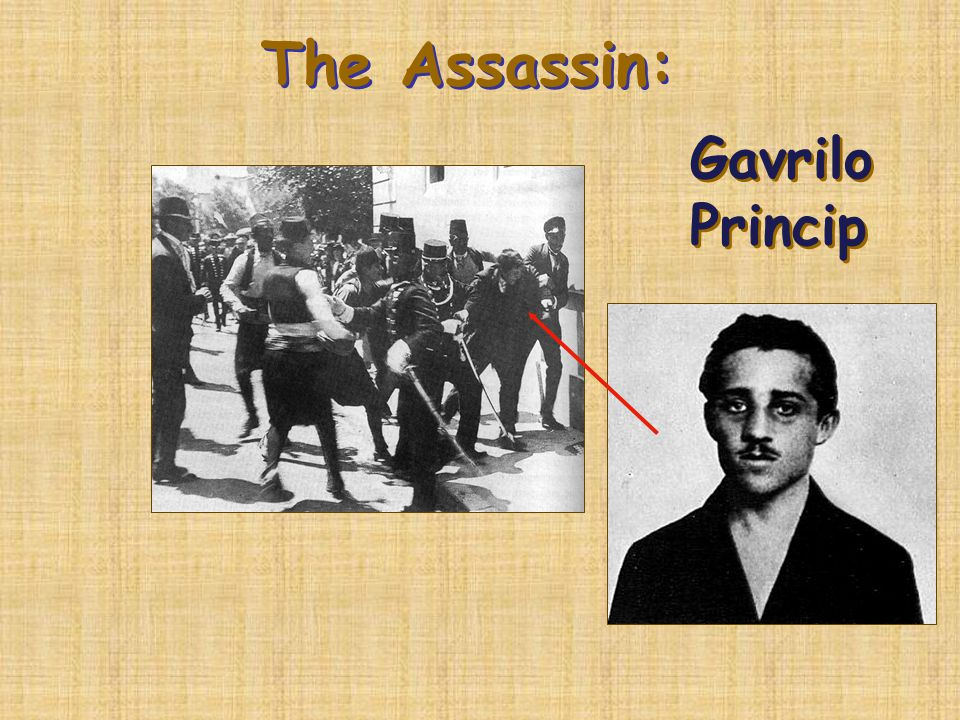 The Assassination of the Archduke : Sarajevo