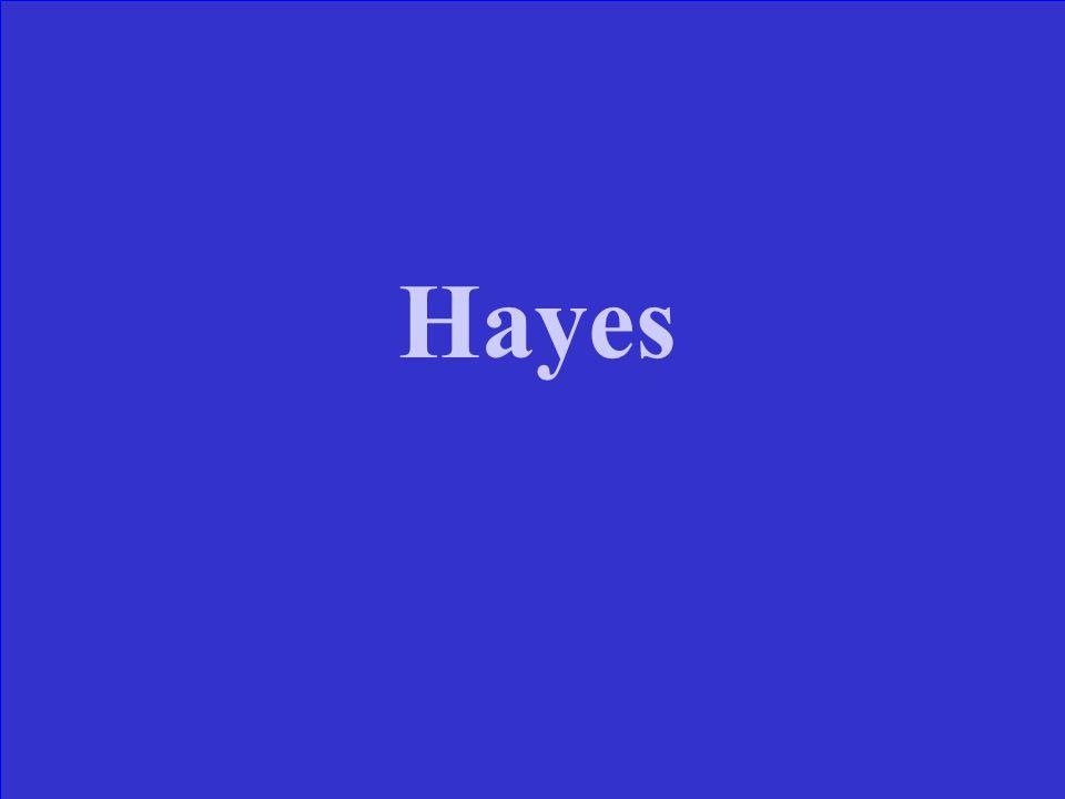 His wife earned the nickname Lemonade Lucy . Grant Hayes Garfield Arthur
