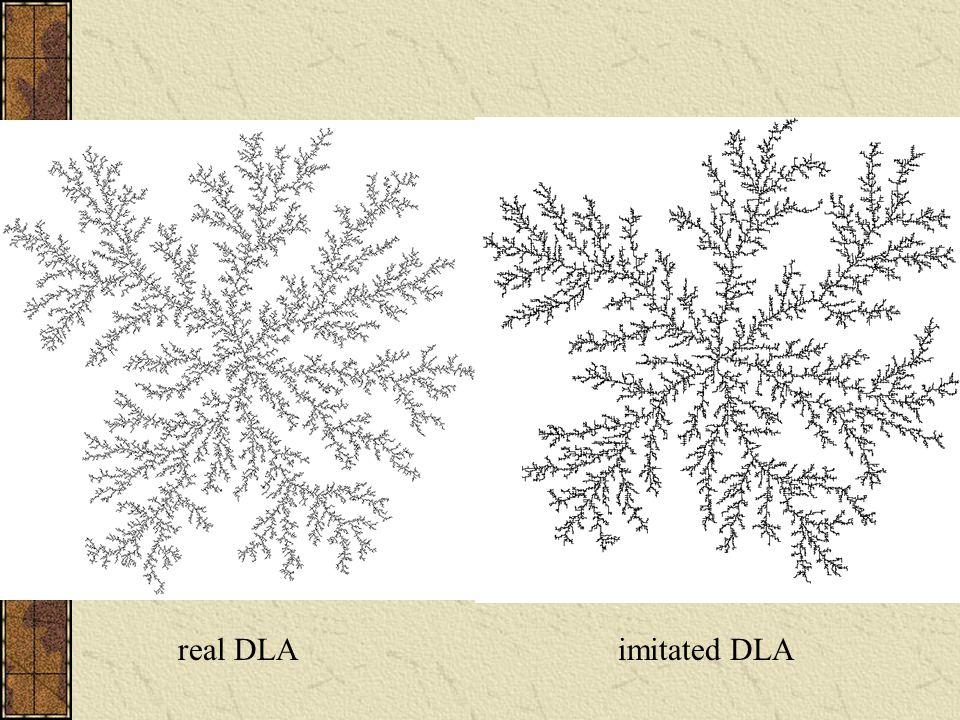 real DLAimitated DLA