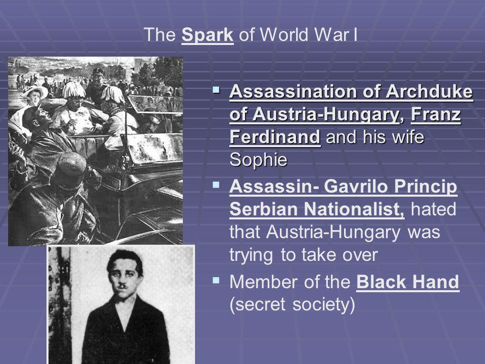Victim-The Archduke Franz Ferdinand Country-Austria-Hungary Shot Rings Throughout Europe Shot Rings Throughout Europe http://www.youtu be.com/watch?v= Bm3mWoKNe_Q http://www.youtu be.com/watch?v= Bm3mWoKNe_Q (3:42)