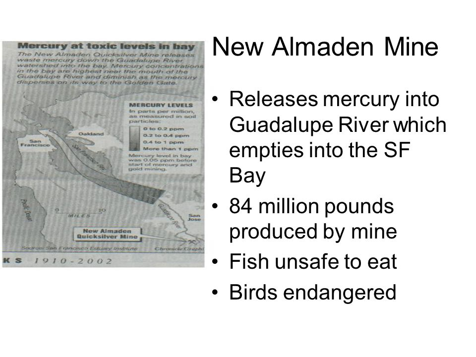 New Almaden Mine Releases mercury into Guadalupe River which empties into the SF Bay 84 million pounds produced by mine Fish unsafe to eat Birds endan