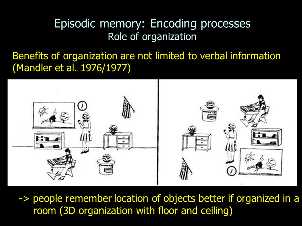 Episodic memory: Encoding processes Role of organization Benefits of organization are not limited to verbal information (Mandler et al.