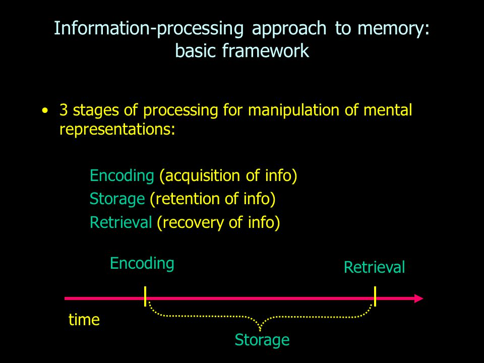 3 stages of processing for manipulation of mental representations: Encoding (acquisition of info) Storage (retention of info) Retrieval (recovery of info) Information-processing approach to memory: basic framework time Encoding Retrieval Storage
