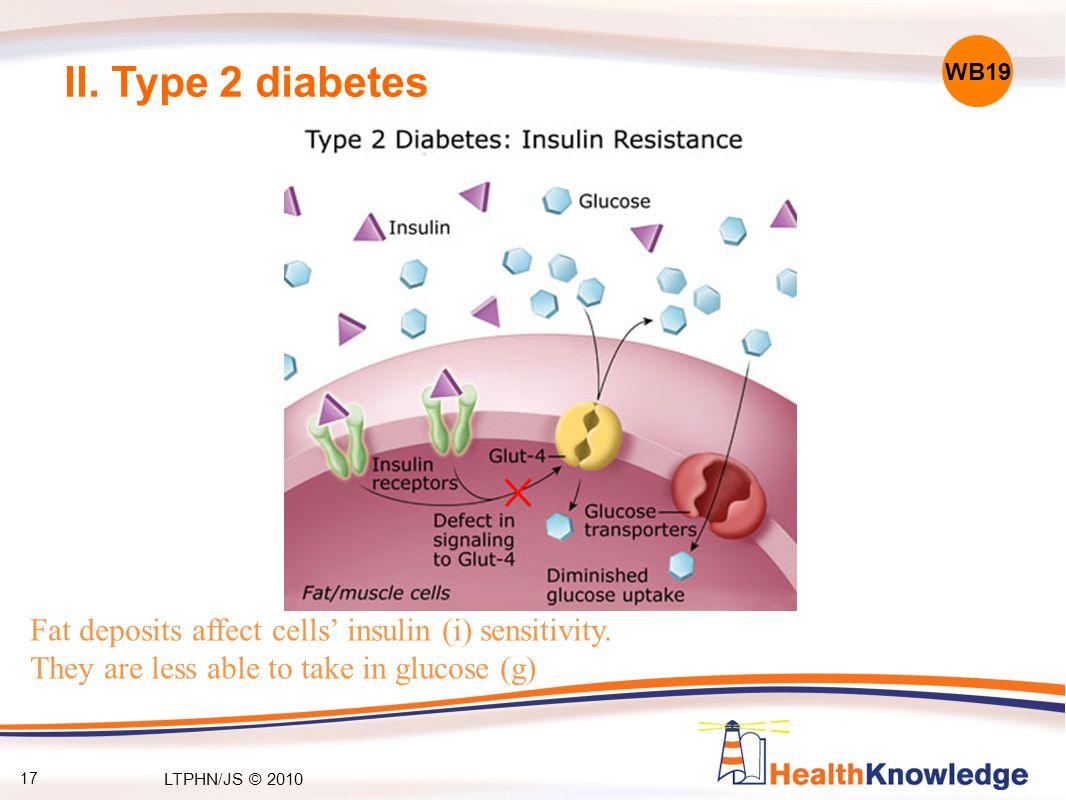 17 II. Type 2 diabetes Fat deposits affect cells' insulin (i) sensitivity.