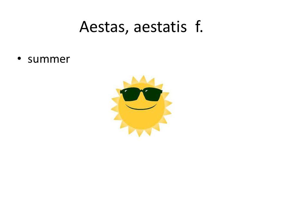 Aestas, aestatis f. summer