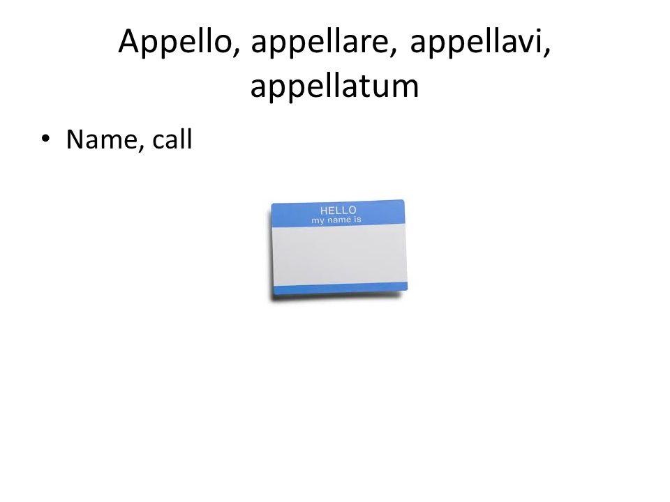 Appello, appellare, appellavi, appellatum Name, call