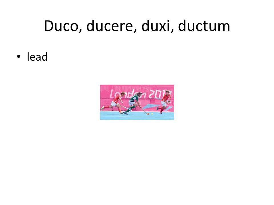 Duco, ducere, duxi, ductum lead