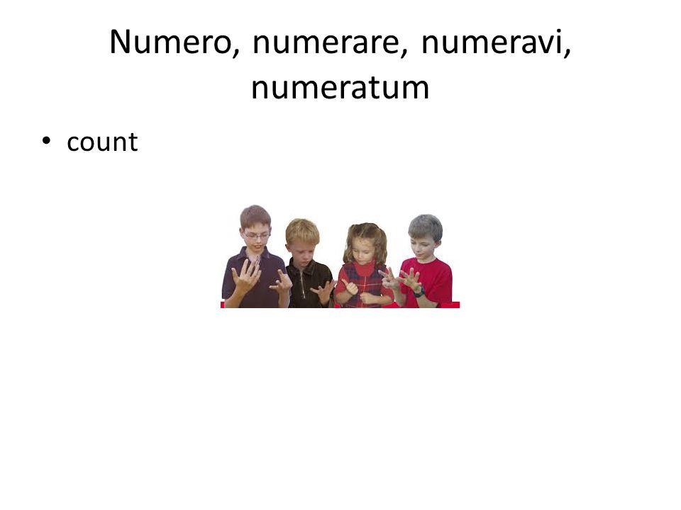 Numero, numerare, numeravi, numeratum count