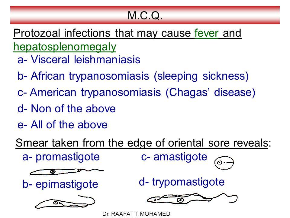 M.C.Q.