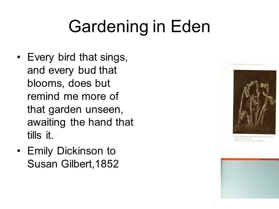 Gardening in Eden Every bird that sings, and every bud that blooms, does but remind me more of that garden unseen, awaiting the hand that tills it.