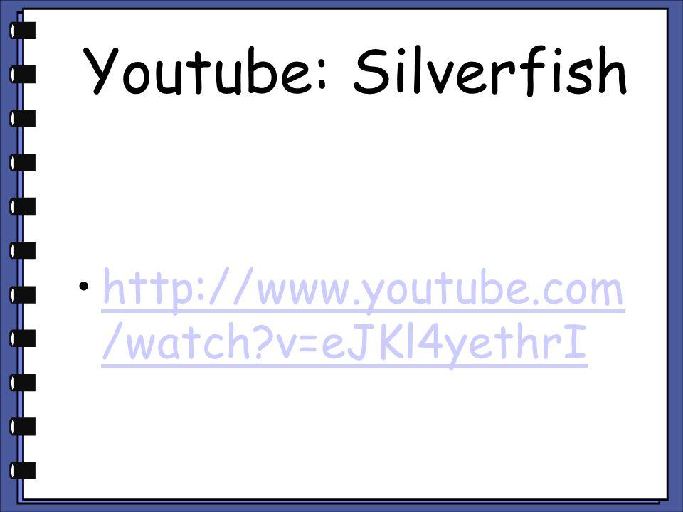 Youtube: Silverfish http://www.youtube.com /watch?v=eJKl4yethrIhttp://www.youtube.com /watch?v=eJKl4yethrI