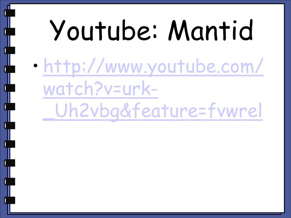 Youtube: Mantid http://www.youtube.com/ watch?v=urk- _Uh2vbg&feature=fvwrelhttp://www.youtube.com/ watch?v=urk- _Uh2vbg&feature=fvwrel