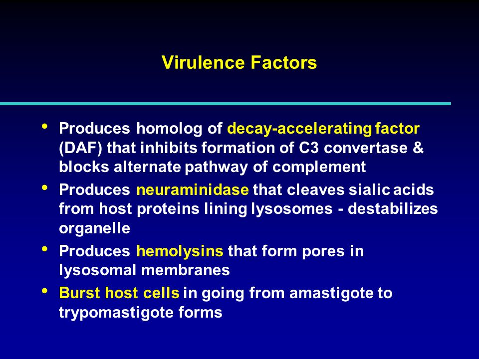 Virulence Factors Produces homolog of decay-accelerating factor (DAF) that inhibits formation of C3 convertase & blocks alternate pathway of complement Produces neuraminidase that cleaves sialic acids from host proteins lining lysosomes - destabilizes organelle Produces hemolysins that form pores in lysosomal membranes Burst host cells in going from amastigote to trypomastigote forms