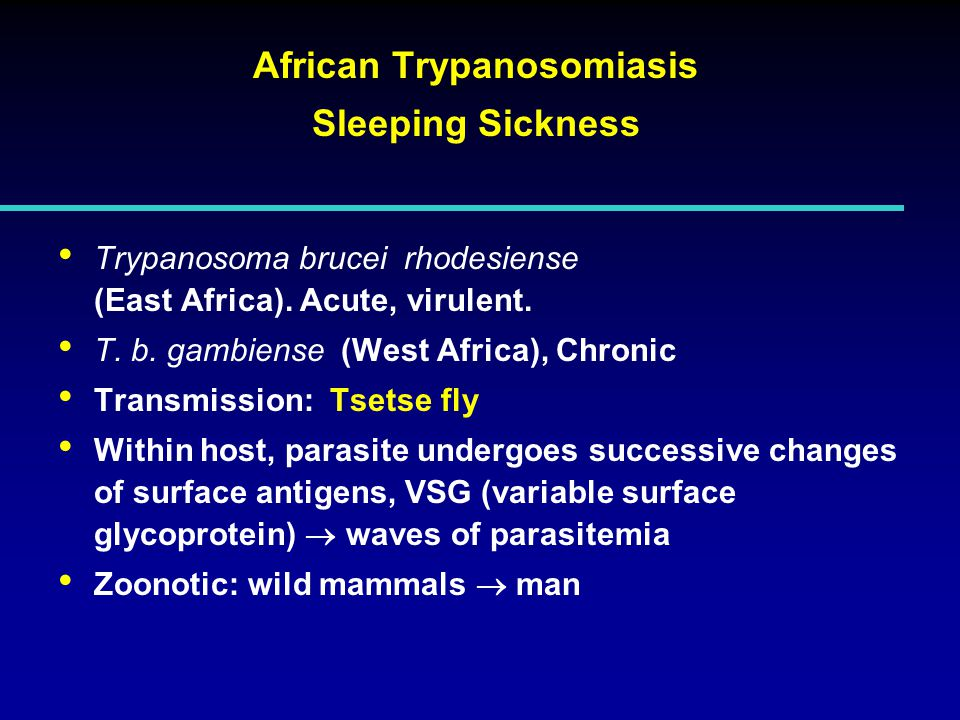 African Trypanosomiasis Sleeping Sickness Trypanosoma brucei rhodesiense (East Africa).