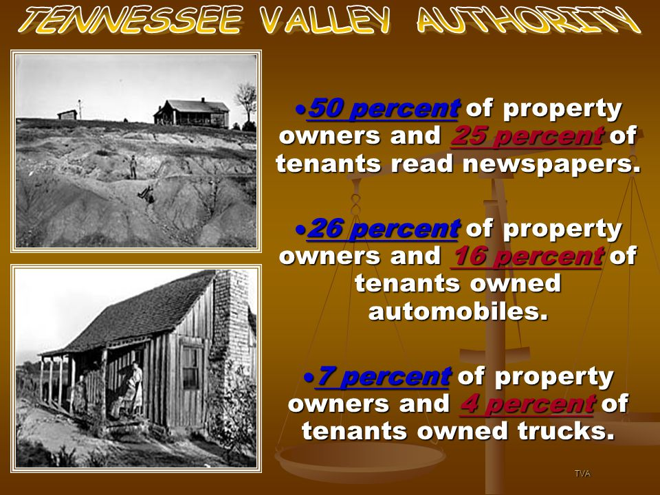  50 percent of property owners and 25 percent of tenants read newspapers.  50 percent of property owners and 25 percent of tenants read newspapers.
