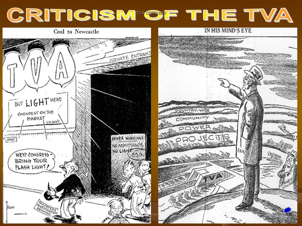TVA CRITICISM