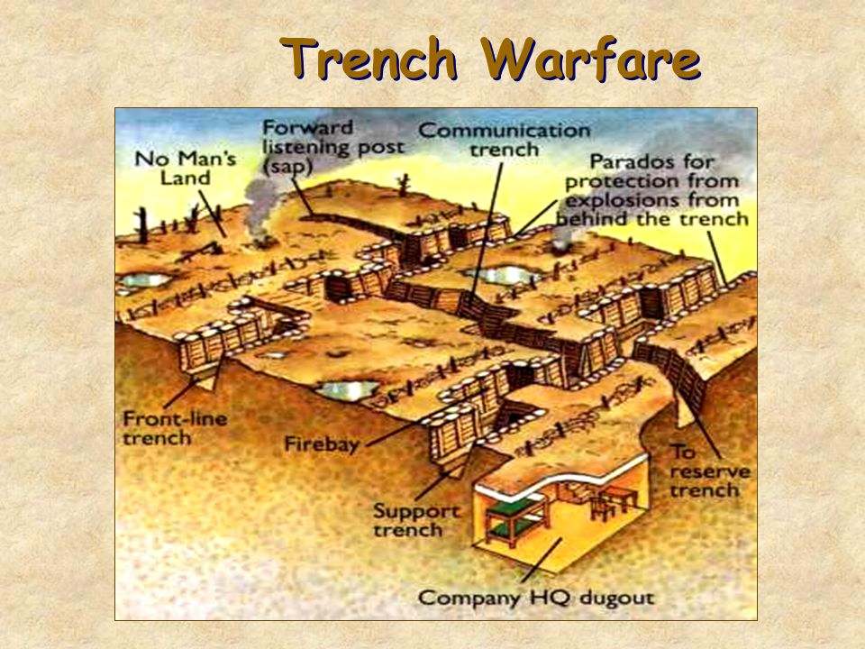 Trench Warfare No Man's Land