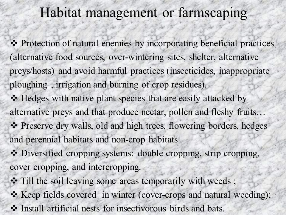 Habitat management or farmscaping  Protection of natural enemies by incorporating beneficial practices (alternative food sources, over-wintering site