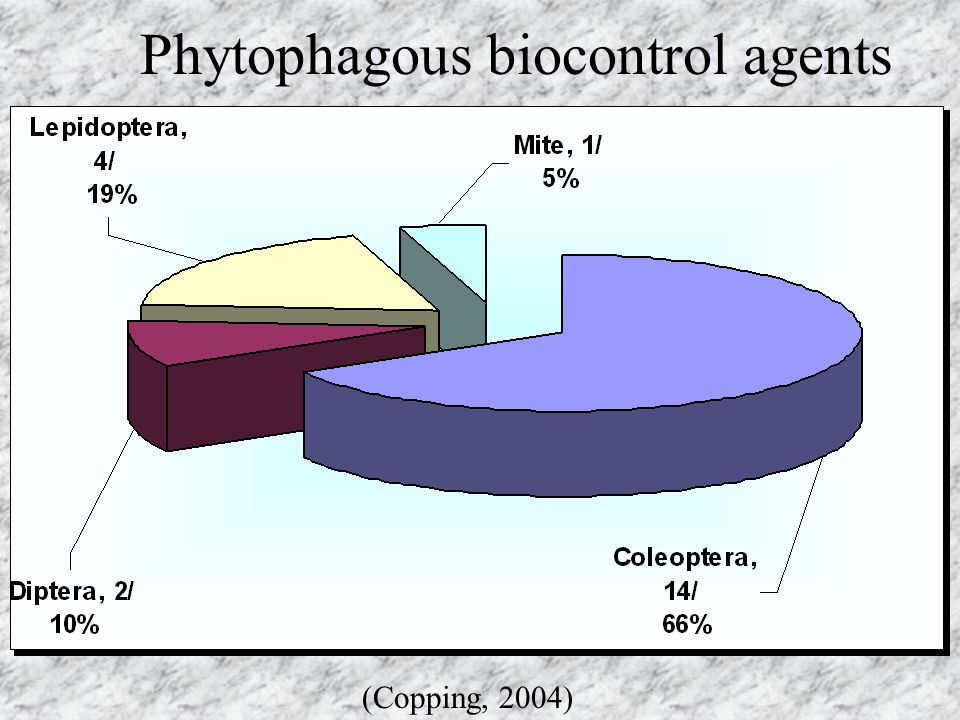 Phytophagous biocontrol agents (Copping, 2004)