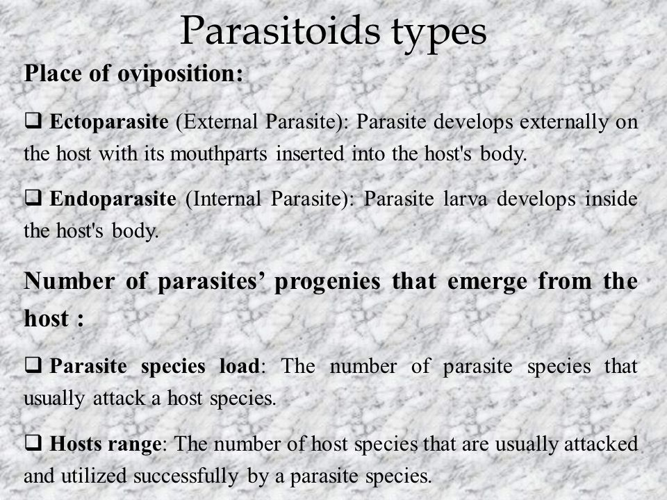 Parasitoids types Place of oviposition:  Ectoparasite (External Parasite): Parasite develops externally on the host with its mouthparts inserted into