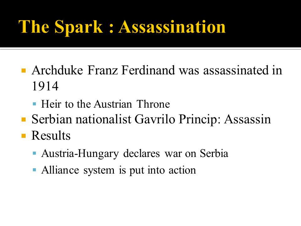  Archduke Franz Ferdinand was assassinated in 1914  Heir to the Austrian Throne  Serbian nationalist Gavrilo Princip: Assassin  Results  Austria-
