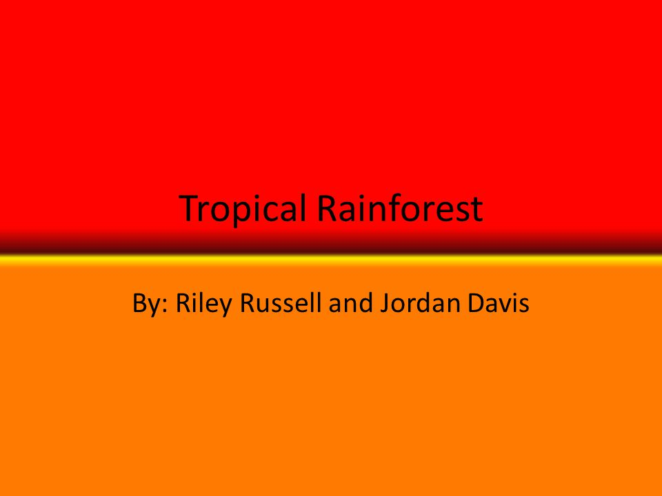 Tropical Rainforest By: Riley Russell and Jordan Davis