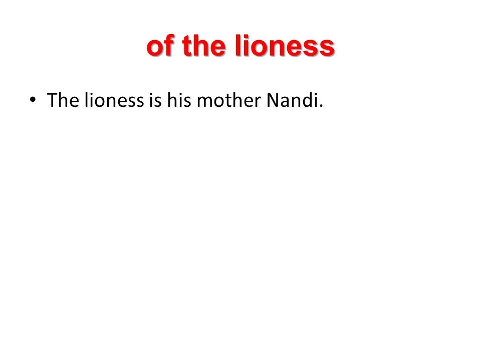 of the lioness The lioness is his mother Nandi.