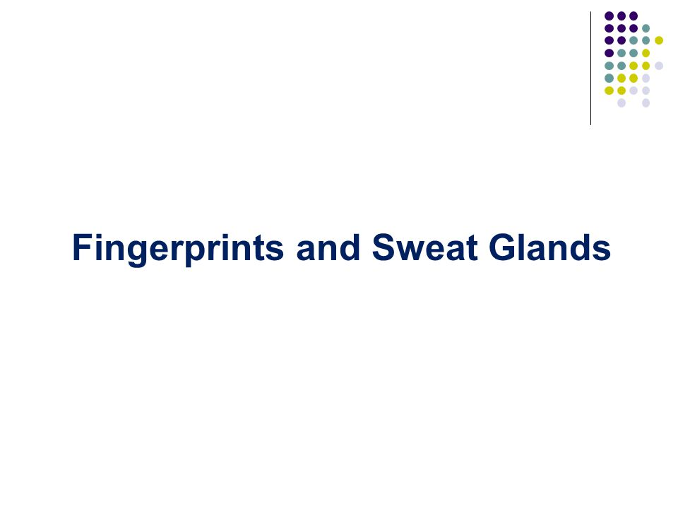 Fingerprints and Sweat Glands