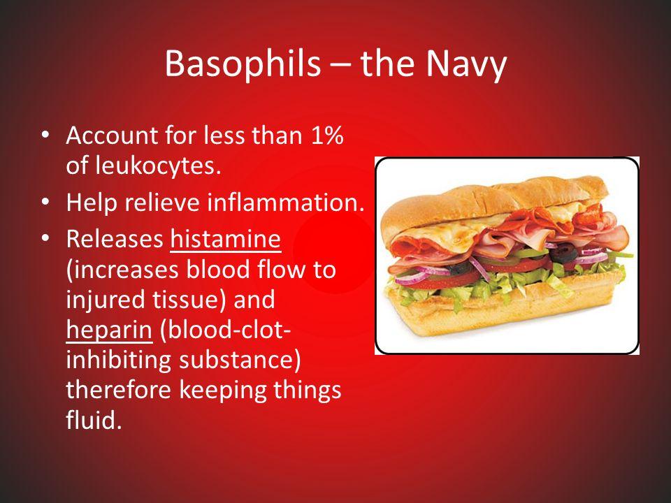 Examples of Human parasites