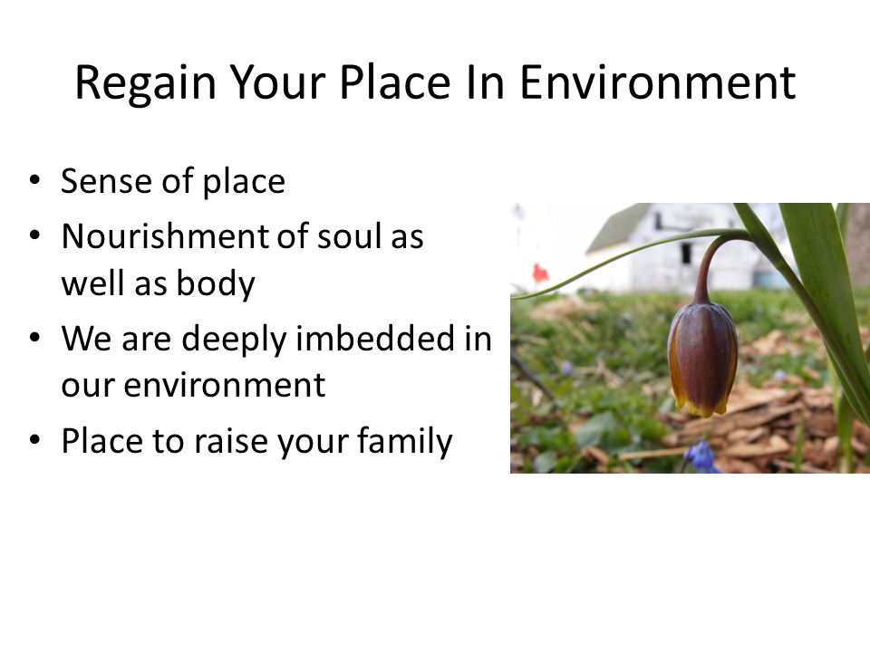 Regain Your Place In Environment Sense of place Nourishment of soul as well as body We are deeply imbedded in our environment Place to raise your fami