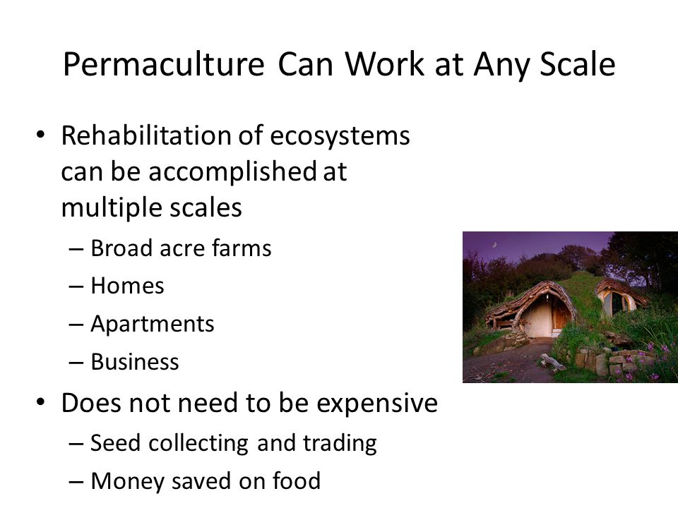 Permaculture Can Work at Any Scale Rehabilitation of ecosystems can be accomplished at multiple scales – Broad acre farms – Homes – Apartments – Busin