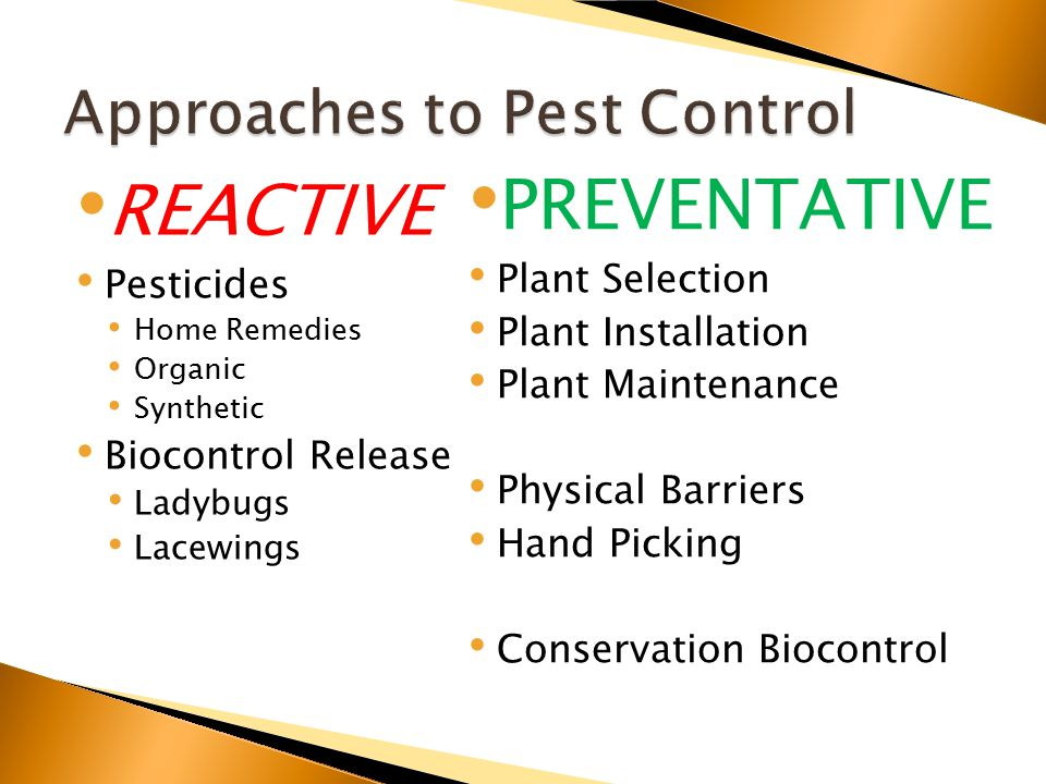 REACTIVE Pesticides Home Remedies Organic Synthetic Biocontrol Release Ladybugs Lacewings PREVENTATIVE Plant Selection Plant Installation Plant Maintenance Physical Barriers Hand Picking Conservation Biocontrol