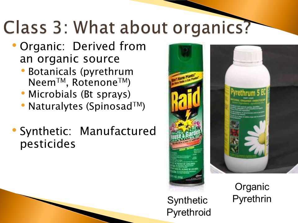 Organic: Derived from an organic source Botanicals (pyrethrum Neem TM, Rotenone TM ) Microbials (Bt sprays) Naturalytes (Spinosad TM ) Synthetic: Manufactured pesticides Synthetic Pyrethroid Organic Pyrethrin