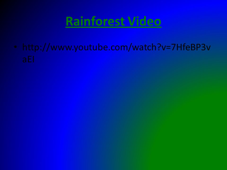 Rainforest Video http://www.youtube.com/watch v=7HfeBP3v aEI