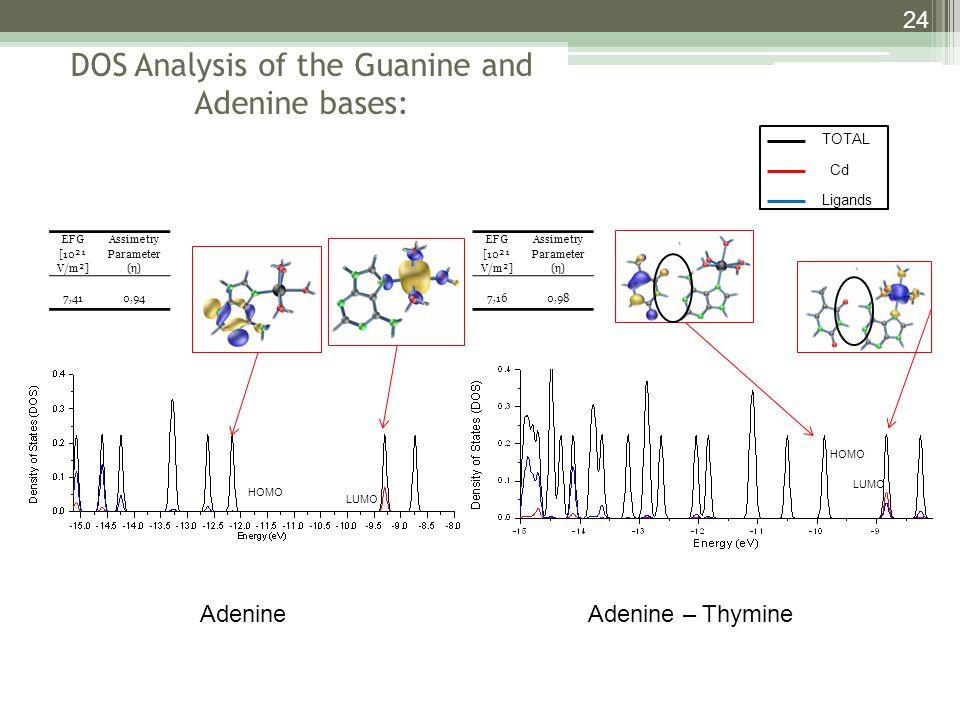DOS Analysis of the Guanine and Adenine bases: 24 HOMO LUMO AdenineAdenine – Thymine EFG [10²¹ V/m²] Assimetry Parameter (η) 7,160,98 HOMO EFG [10²¹ V/m²] Assimetry Parameter (η) 7,410,94 TOTAL Cd Ligands