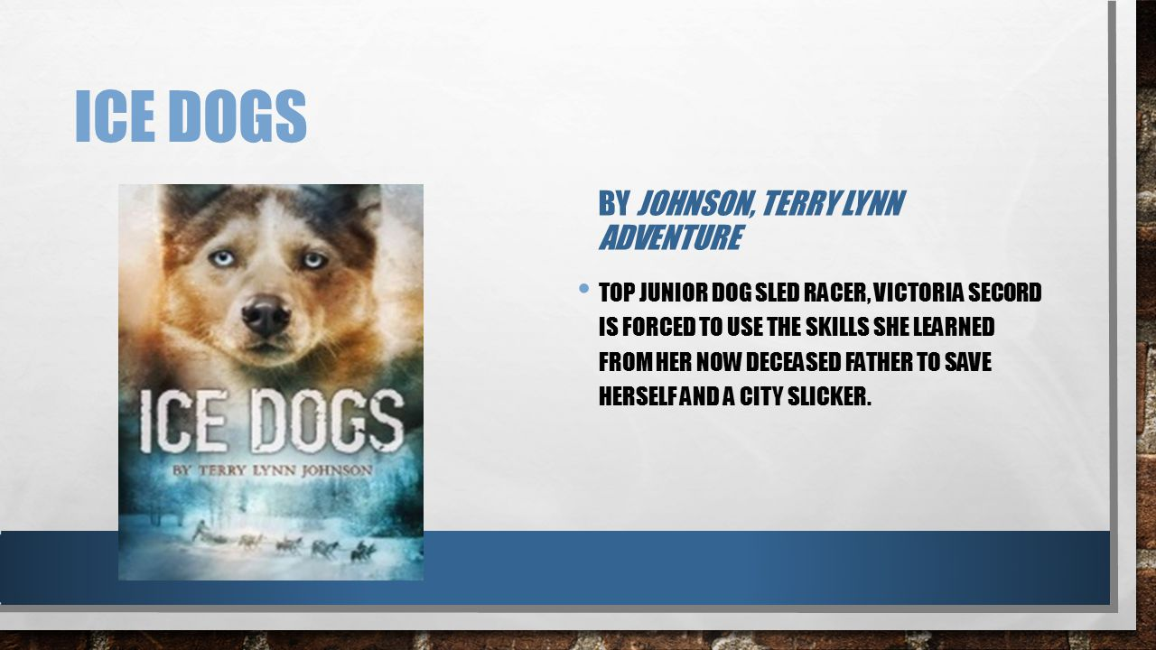 ICE DOGS BY JOHNSON, TERRY LYNN ADVENTURE TOP JUNIOR DOG SLED RACER, VICTORIA SECORD IS FORCED TO USE THE SKILLS SHE LEARNED FROM HER NOW DECEASED FAT