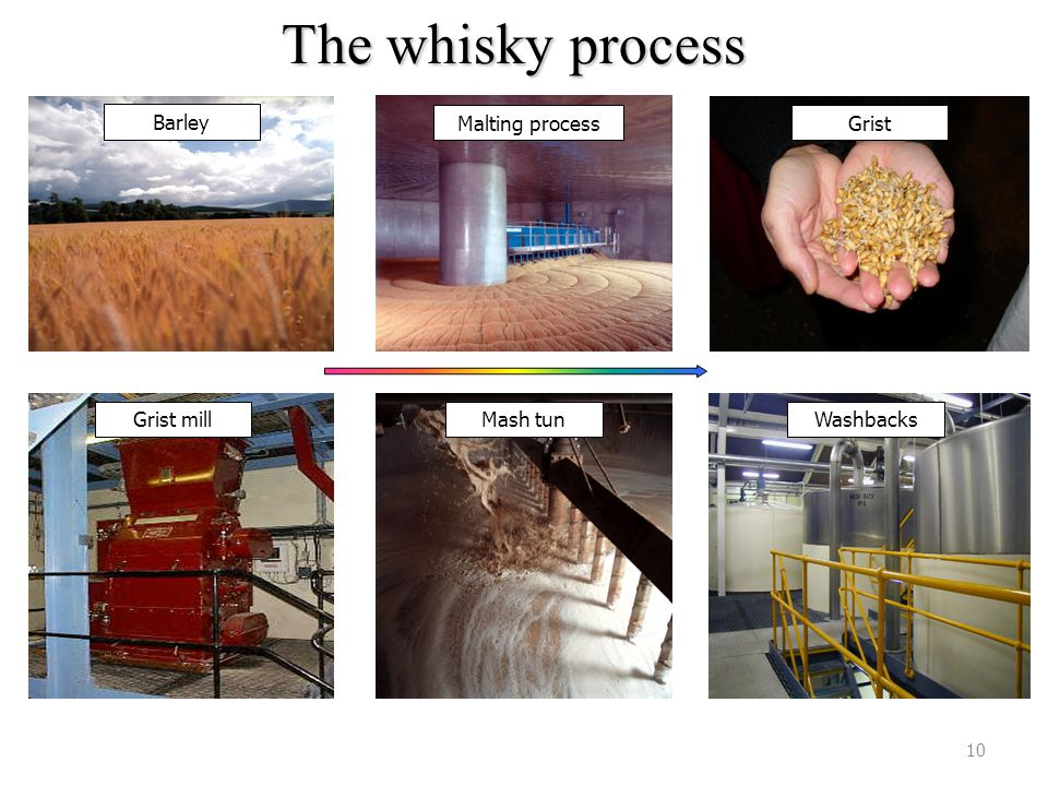 The whisky process 10 Barley WashbacksMash tunGrist mill GristMalting process
