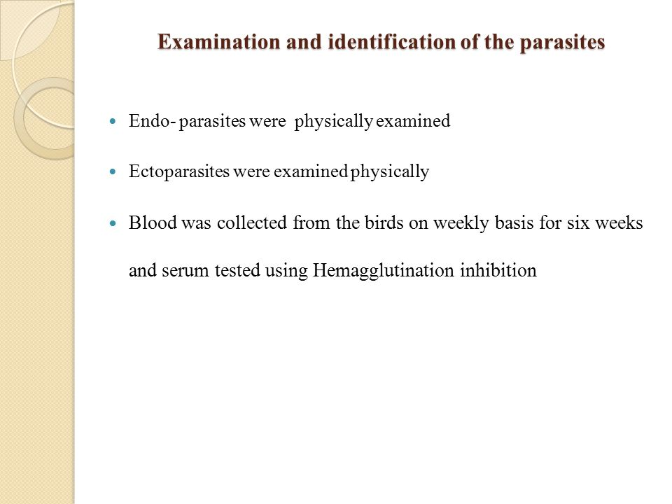 Examination and identification of the parasites Endo- parasites were physically examined Ectoparasites were examined physically Blood was collected from the birds on weekly basis for six weeks and serum tested using Hemagglutination inhibition