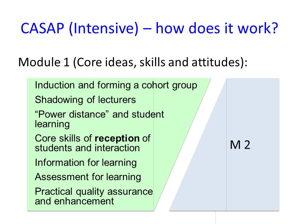Leadership Development: Once a cohort has successfully graduated from the CASAP (I) we invite leaders of their institutions to a leadership development programme 1.Leaders have the opportunity to experience the individual transformation their people have achieved 2.Debating and planning how to sustain institutional change is encouraged