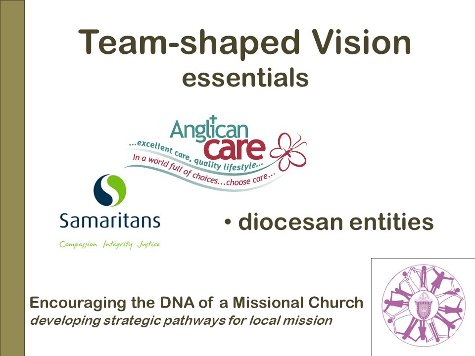 Encouraging the DNA of a Missional Church developing strategic pathways for local mission Team-shaped Vision essentials diocesan entities