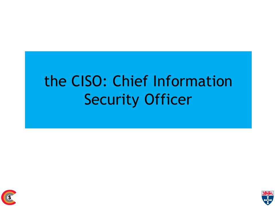 the CISO: Chief Information Security Officer