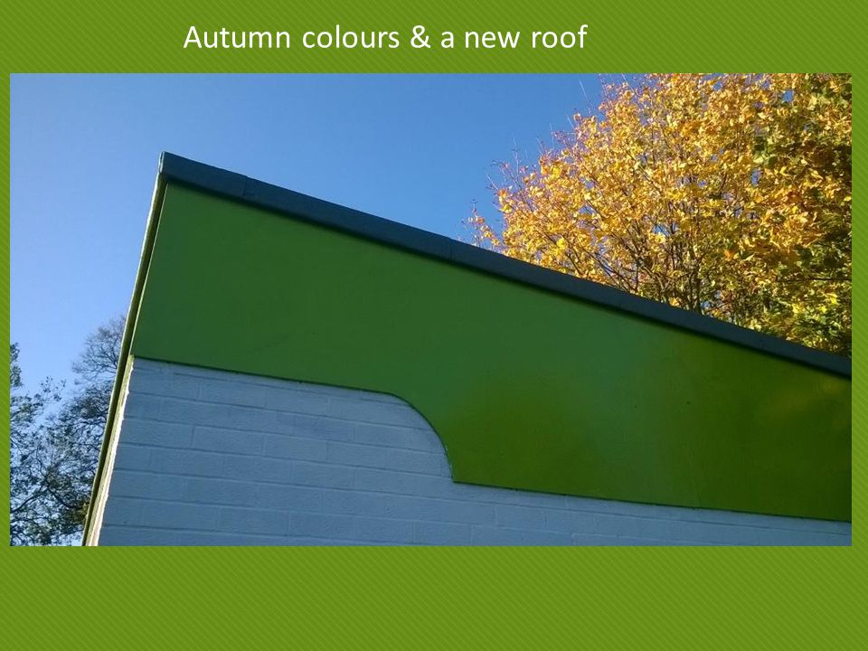 Autumn colours & a new roof