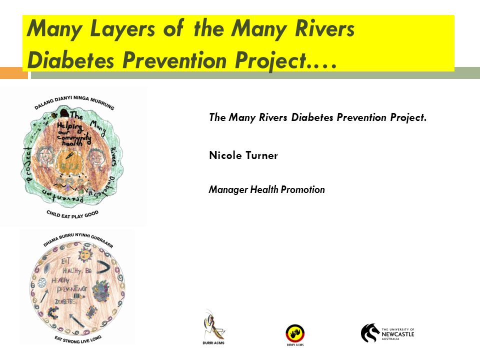 Many Layers of the Many Rivers Diabetes Prevention Project.… The Many Rivers Diabetes Prevention Project. Nicole Turner Manager Health Promotion