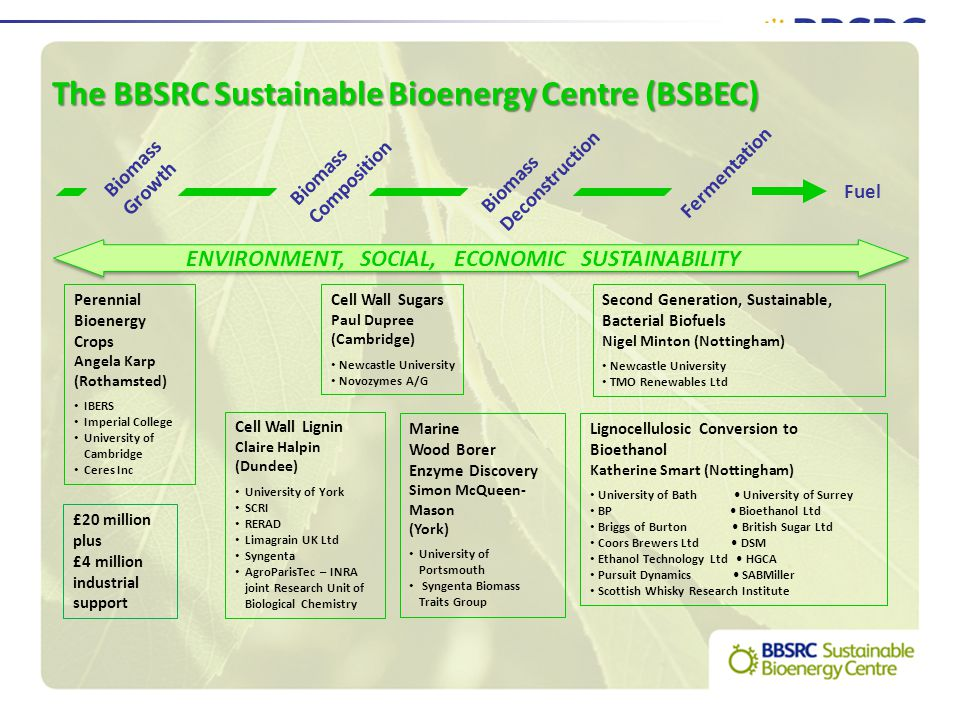 The BBSRC Sustainable Bioenergy Centre (BSBEC) Perennial Bioenergy Crops Angela Karp (Rothamsted) IBERS Imperial College University of Cambridge Ceres Inc Cell Wall Sugars Paul Dupree (Cambridge) Newcastle University Novozymes A/G Cell Wall Lignin Claire Halpin (Dundee) University of York SCRI RERAD Limagrain UK Ltd Syngenta AgroParisTec – INRA joint Research Unit of Biological Chemistry Lignocellulosic Conversion to Bioethanol Katherine Smart (Nottingham) University of Bath University of Surrey BP Bioethanol Ltd Briggs of Burton British Sugar Ltd Coors Brewers Ltd DSM Ethanol Technology Ltd HGCA Pursuit Dynamics SABMiller Scottish Whisky Research Institute Second Generation, Sustainable, Bacterial Biofuels Nigel Minton (Nottingham) Newcastle University TMO Renewables Ltd Marine Wood Borer Enzyme Discovery Simon McQueen- Mason (York) University of Portsmouth Syngenta Biomass Traits Group Biomass Growth Biomass Composition Biomass Deconstruction Fermentation Fuel ENVIRONMENT, SOCIAL, ECONOMIC SUSTAINABILITY £20 million plus £4 million industrial support
