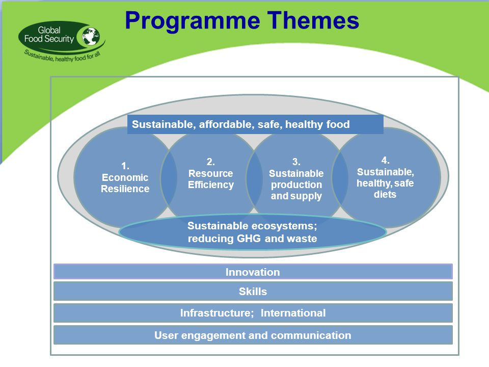 Programme Themes 1. Economic Resilience 2. Resource Efficiency 3.