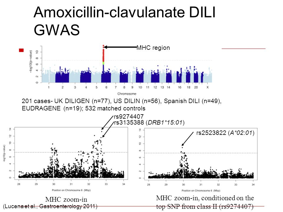 Amoxicillin-clavulanate DILI GWAS MHC zoom-in, conditioned on the top SNP from class II (rs9274407) rs2523822 (A*02:01) MHC zoom-in rs9274407 rs313538