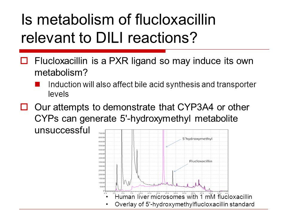 Is metabolism of flucloxacillin relevant to DILI reactions?  Flucloxacillin is a PXR ligand so may induce its own metabolism? Induction will also aff