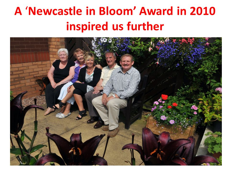 A 'Newcastle in Bloom' Award in 2010 inspired us further 6
